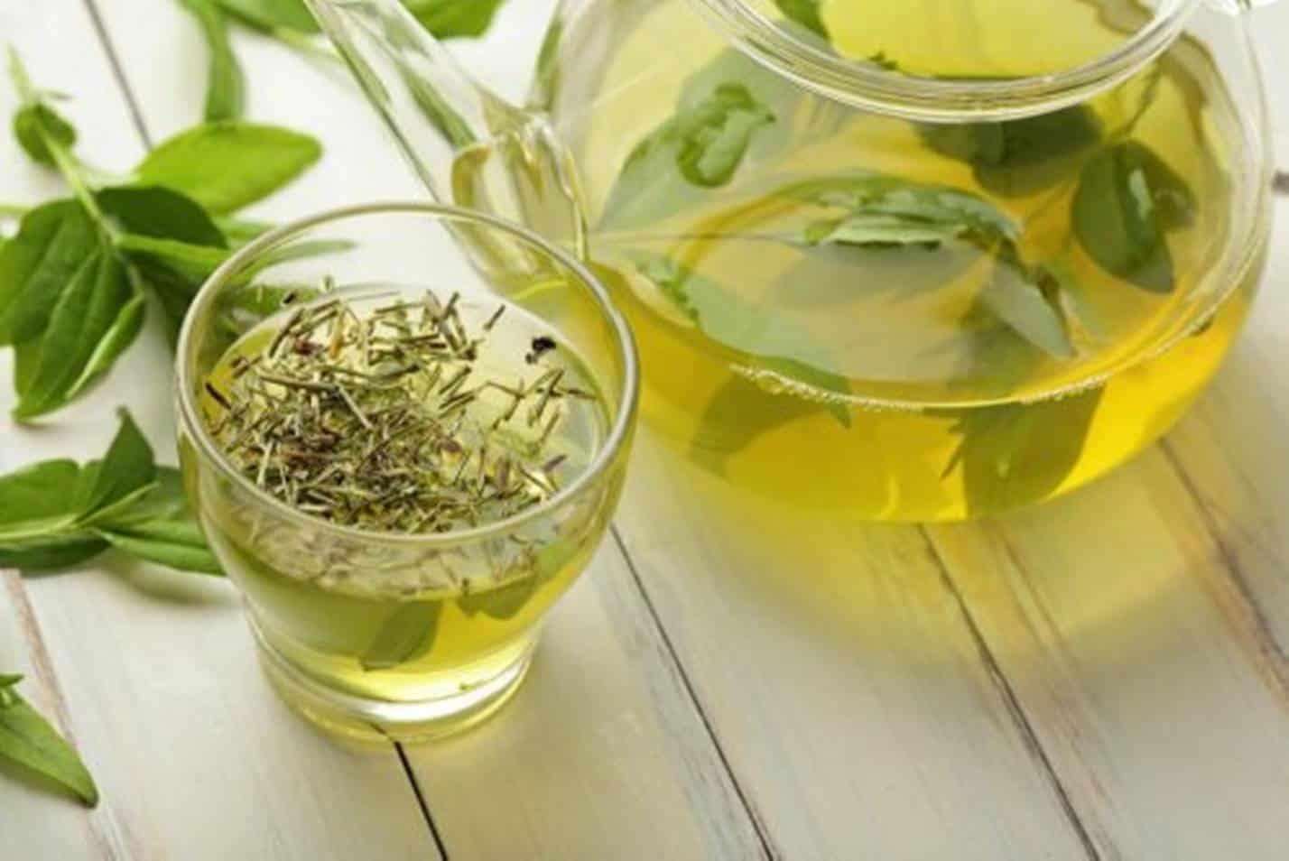 Como tomar Chá Verde para QUEIMAR gordura e emagrecer: veja quantidade certa