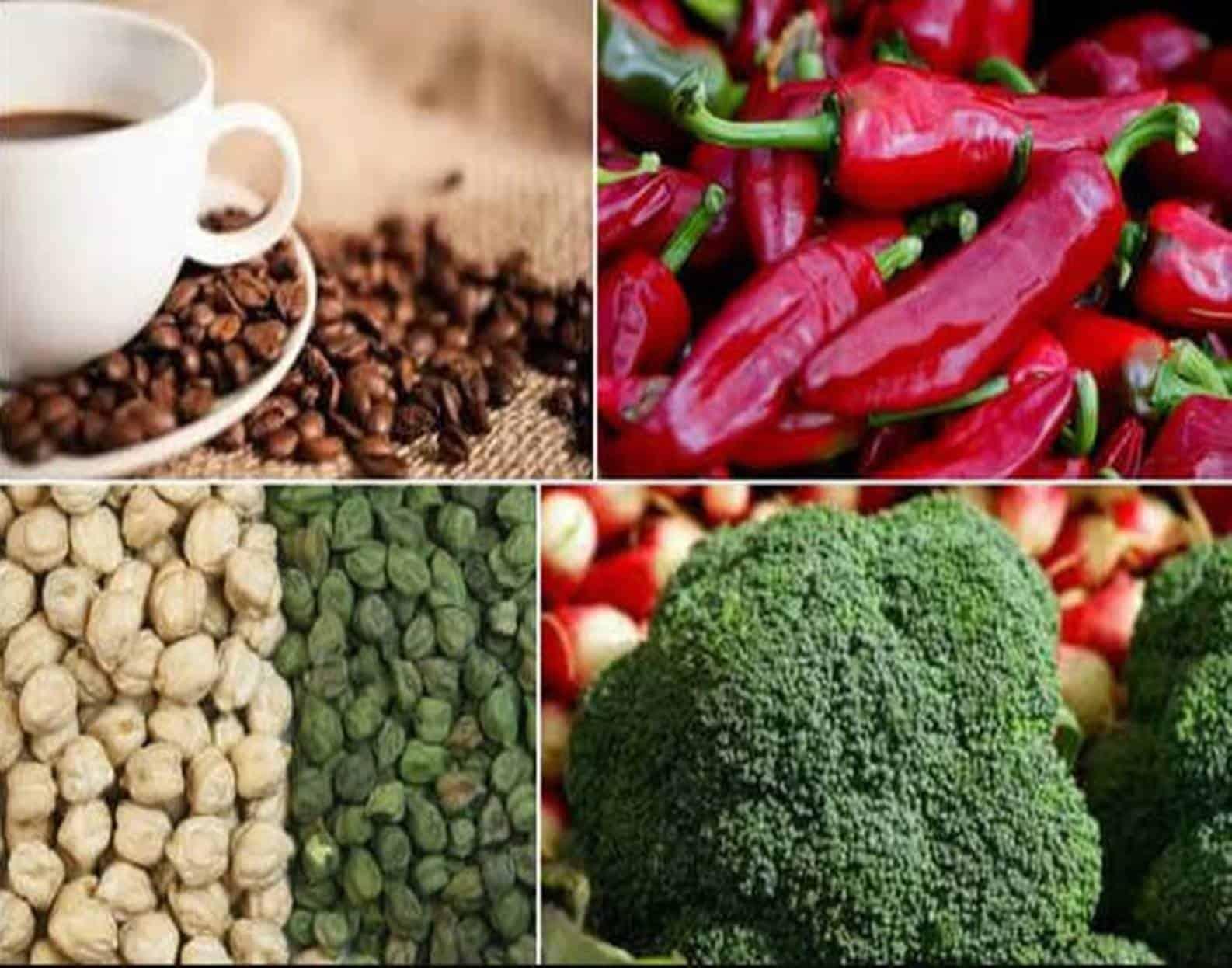 Dieta saudável: doze alimentos que você deve comer todos os dias