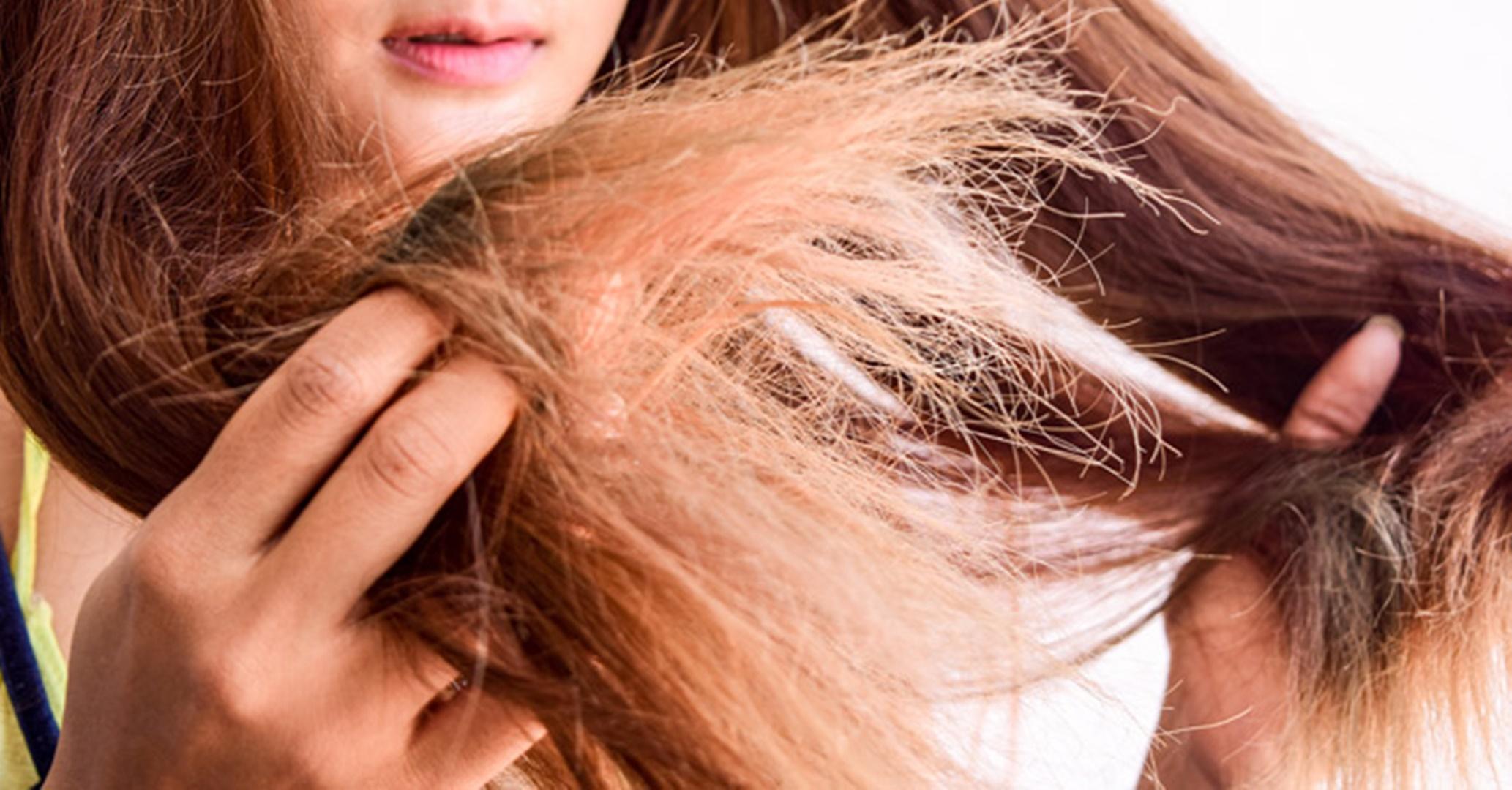 Acabe com os cabelos secos de uma vez com estas receitas naturais