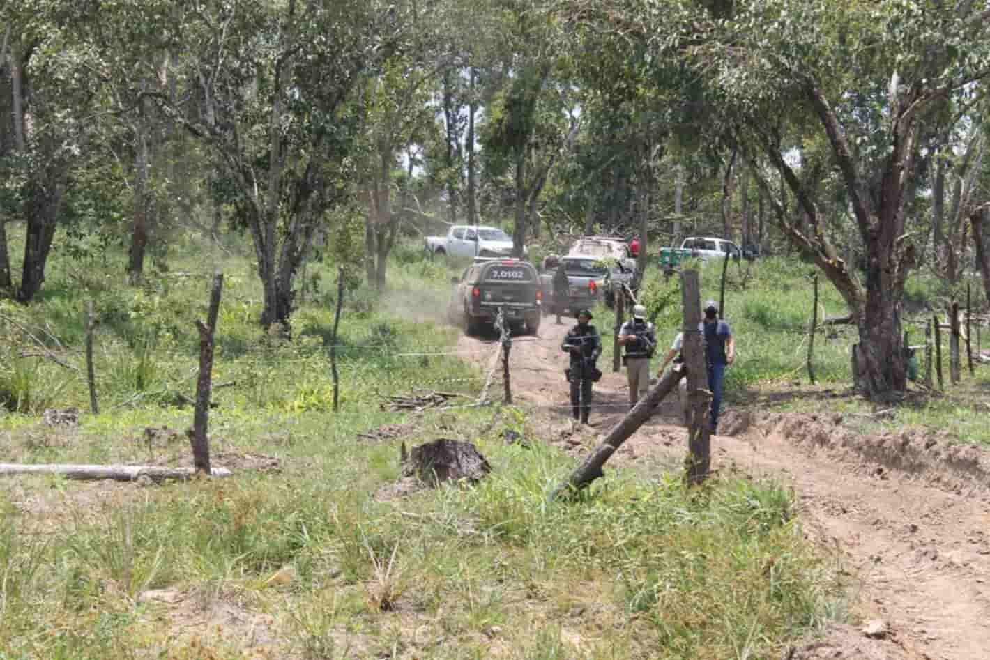 Força tarefa combate invasão em anel florestal no Polo de Camaçari
