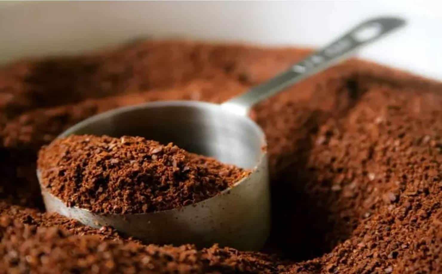 Receitas caseiras com café para cuidar da pele e ficar linda