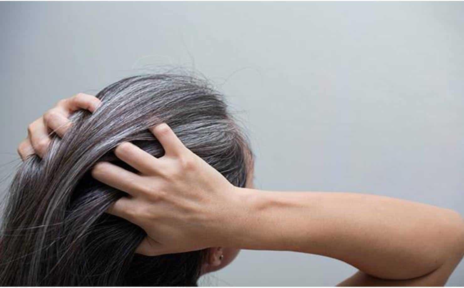 Veja como pintar cabelos grisalhos com folhas de nozes