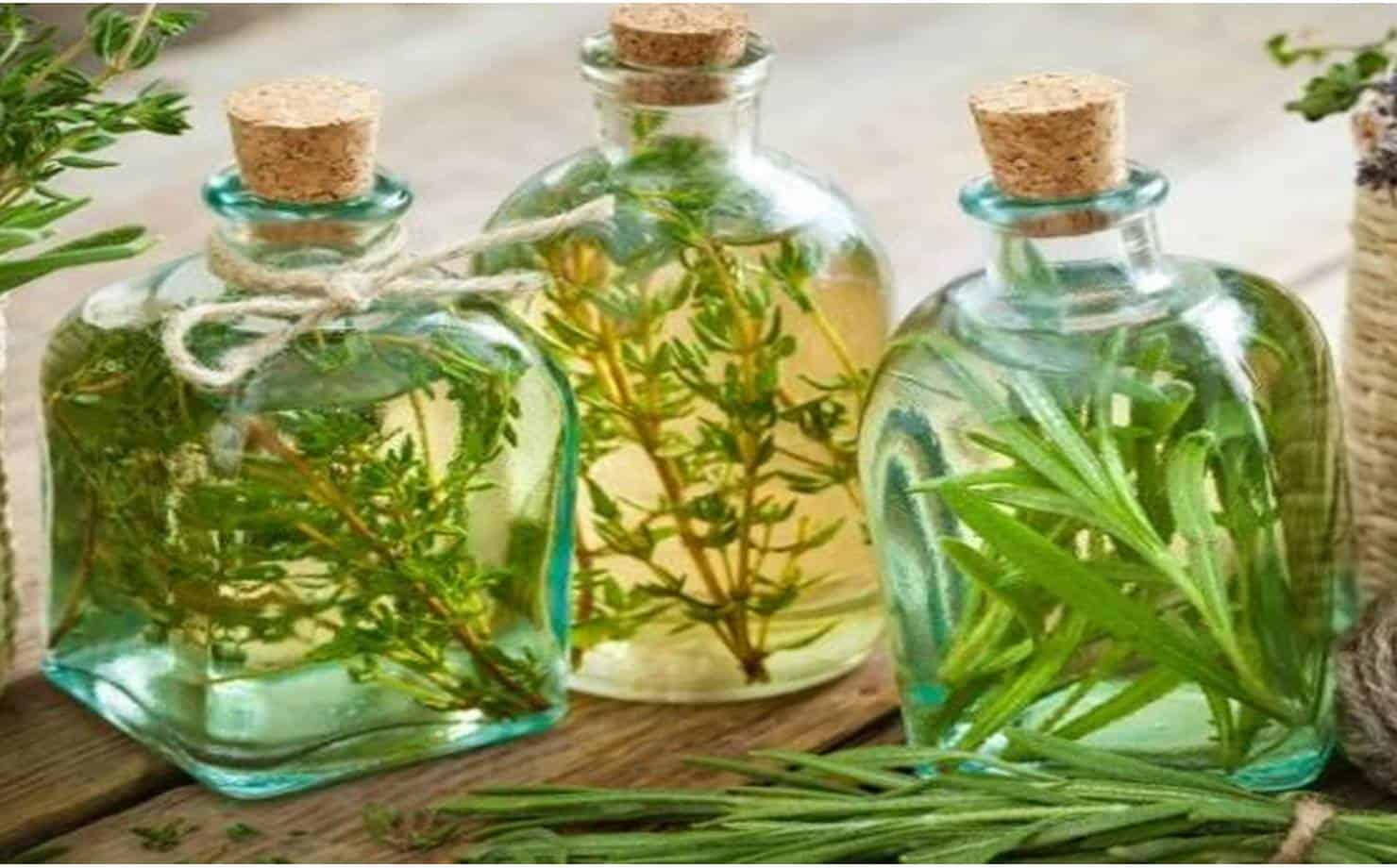 Vinagre aromatizado: ideal para limpar e deixar a casa cheirosa