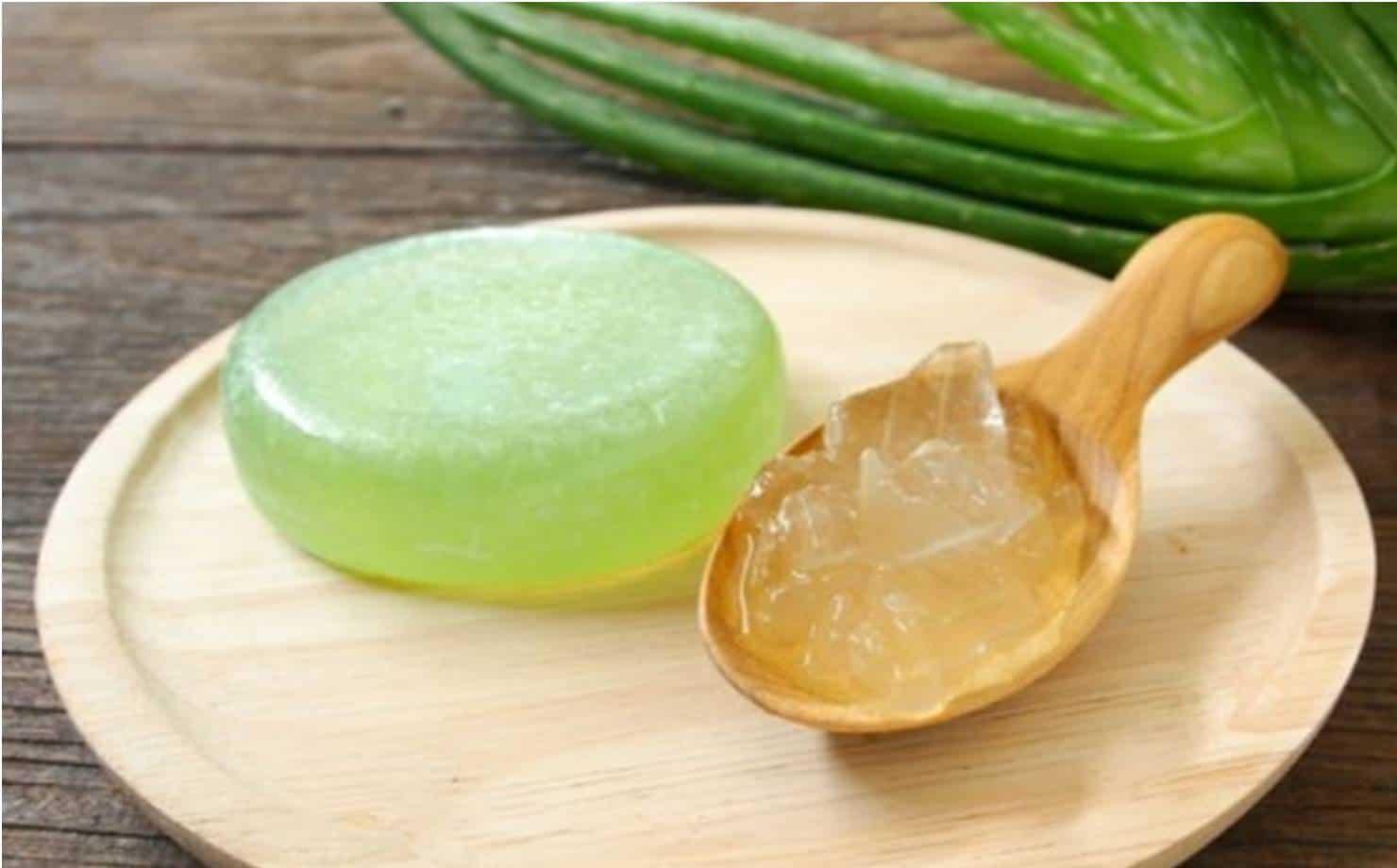 Como fazer sabonete caseiro de aloe vera para uma pele bem cuidada