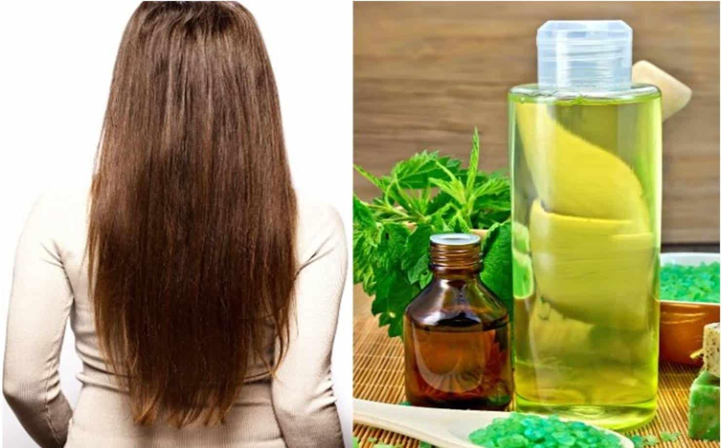 Shampoo de Linhaça e Aloe Vera para ajudar a crescer seu cabelo
